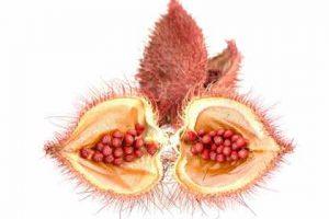 annatto seeds, natural colors, natural colours, bixin, norbixin, natural color, coloring food